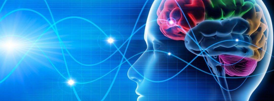 Un programa original: visión interdisciplinar de la Inteligencia Emocional
