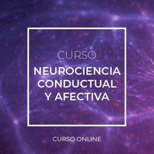 Curso Neurociencia conductual y afectiva